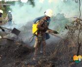 Treinamento prático de combate a incêndios para Defesa Civil e SEMA